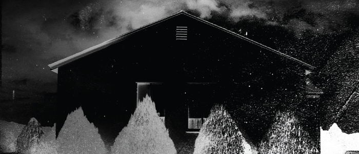 http://www.slashfilm.com/wp/wp-content/images/Ill-Be-Gone-in-the-Dark-series.jpg