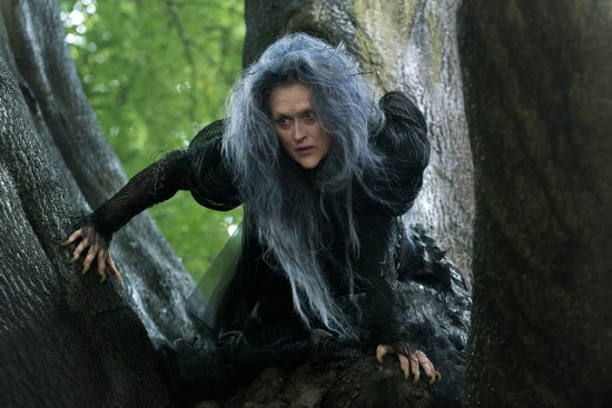Into the Woods - Meryl Streep as the Witch