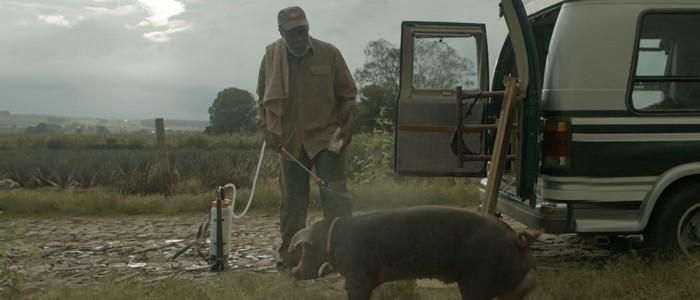 Mr Pig trailer