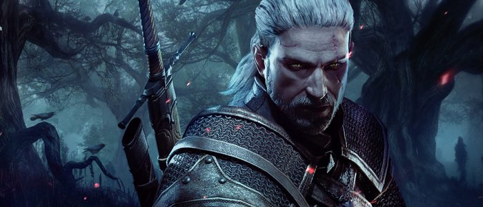 The Witcher TV show