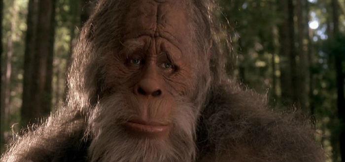 47 Bigfoot Movies Ranked