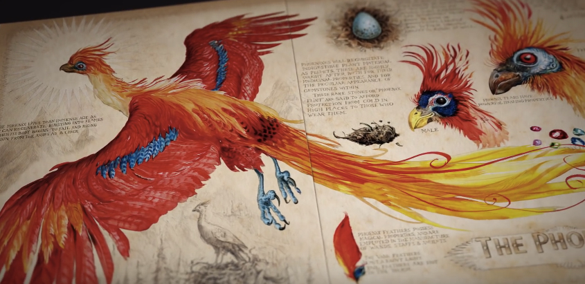 Get a sneak peek at harry potter and the chamber of secrets harry potter and the chamber of secrets illustrated edition voltagebd Gallery