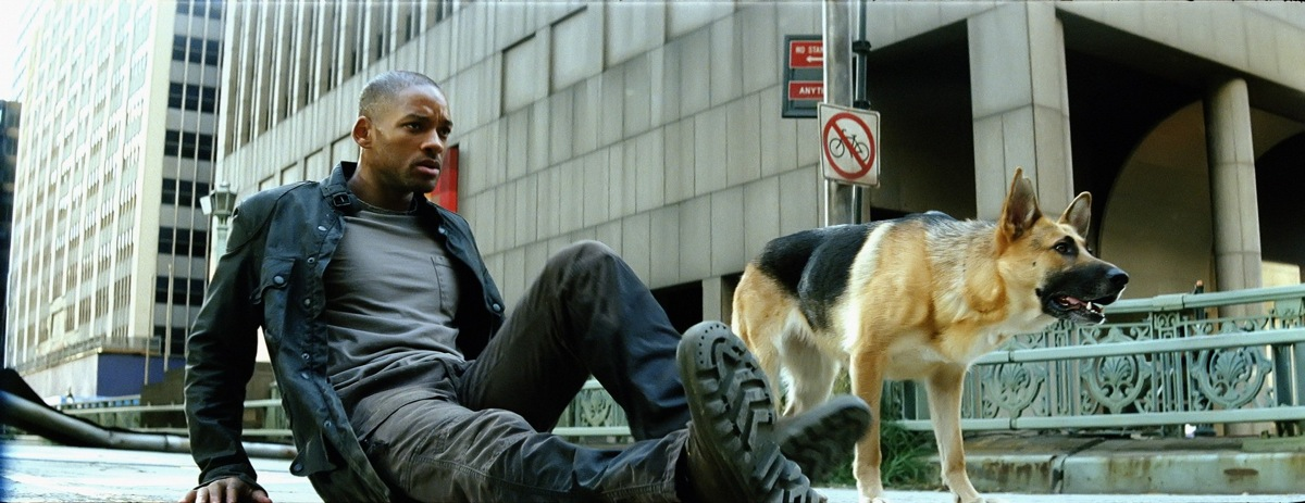 From the beginning  I was  I Am Legend Zombie Dog