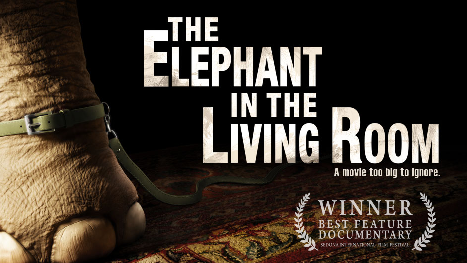 iffboston movie review and interview michael webbers the elephant in the living room film - The Elephant In The Living Room
