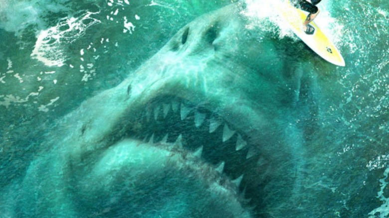 15 Movies About Sharks You Need To Watch