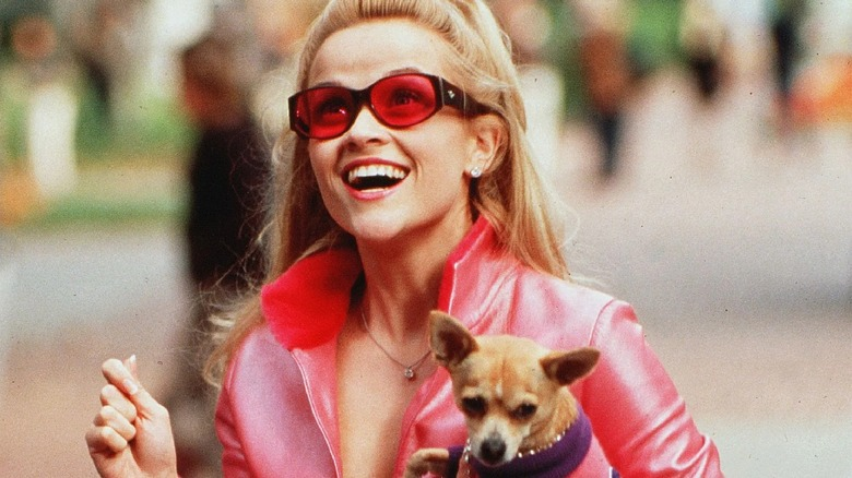 15 Must-See Movies About College, Ranked