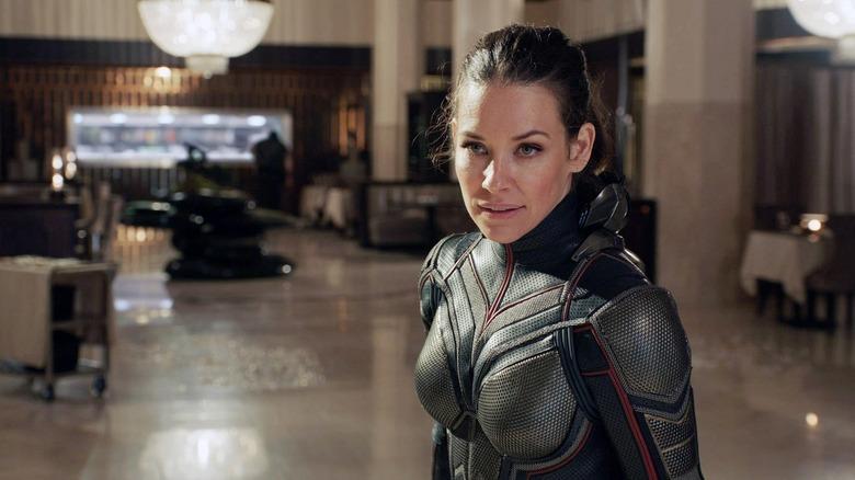 Ant-Man 3 Star Evangeline Lilly Is A Bit Behind On Her MCU  Homework