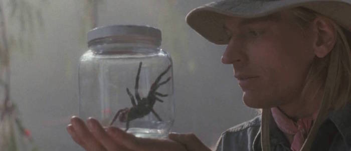 Arachnophobia Revisited