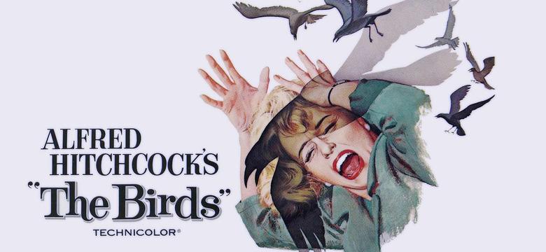 Thr Birds Remake