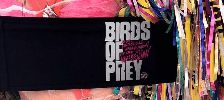 Birds of Prey Action Scenes