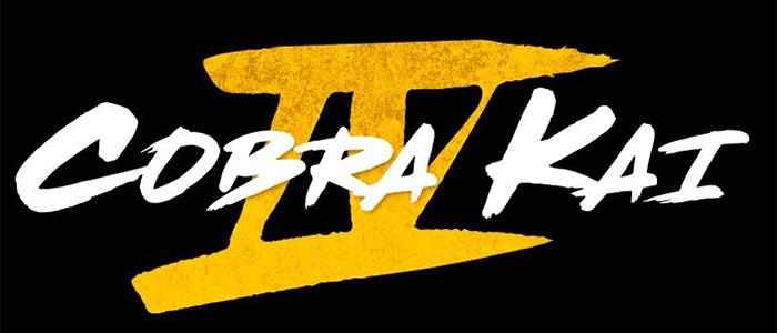 Cobra Kai Season 4 Trailer