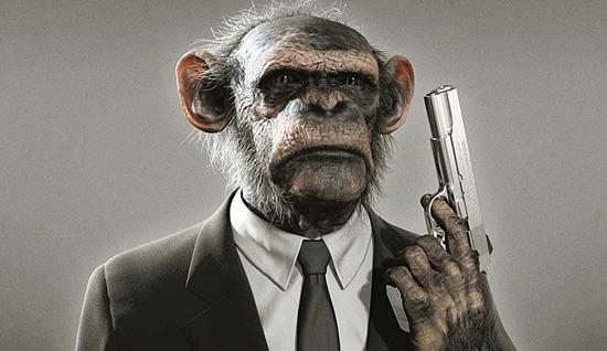 war-monkeys-1