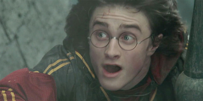 Grown Up Harry Potter