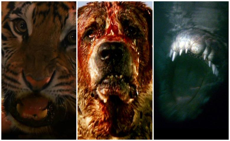 Killer Animal Movies