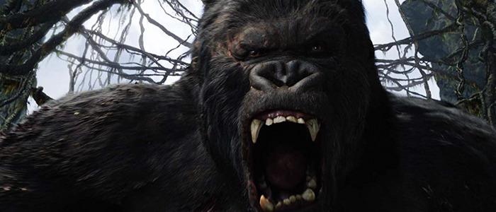 King Kong sequel