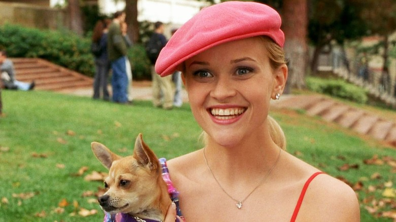 Legally Blonde 3: Release Date, Cast, And More