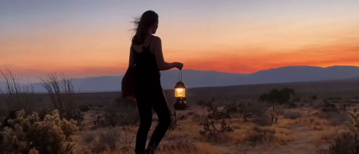 Lubezki's iPhone 12 commercial
