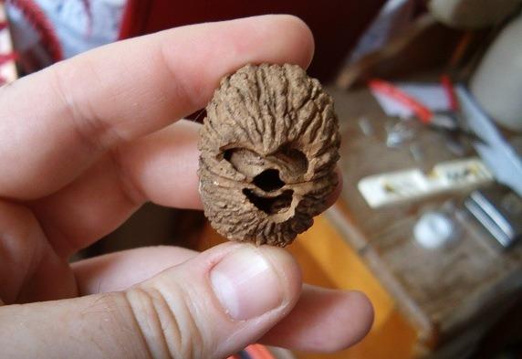 Walnut That Looks Like Chewbacca From 'Star Wars'