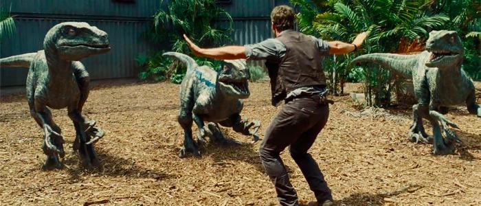 Chris Pratt training raptors at a children's hospital