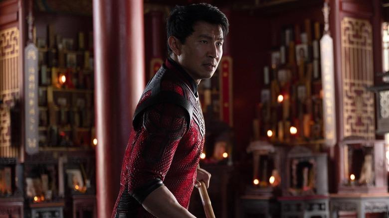 Shang-Chi warrior pose