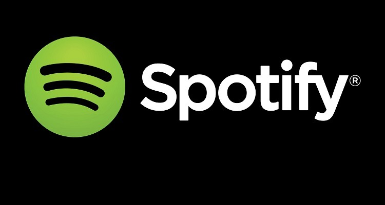 Spotify netflix series