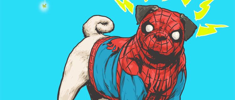 Spider-Man dog