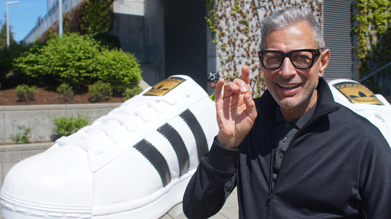 The World According To Jeff Goldblum Season 2: Release Date, Cast, And More