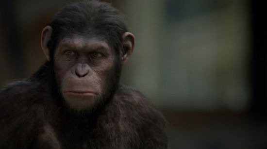 Serkis Rise of Apes