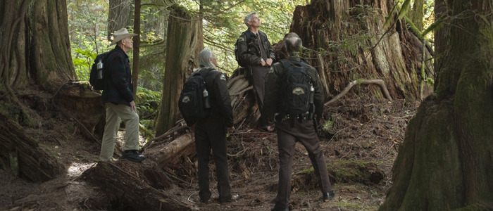 Twin Peaks part 14 review
