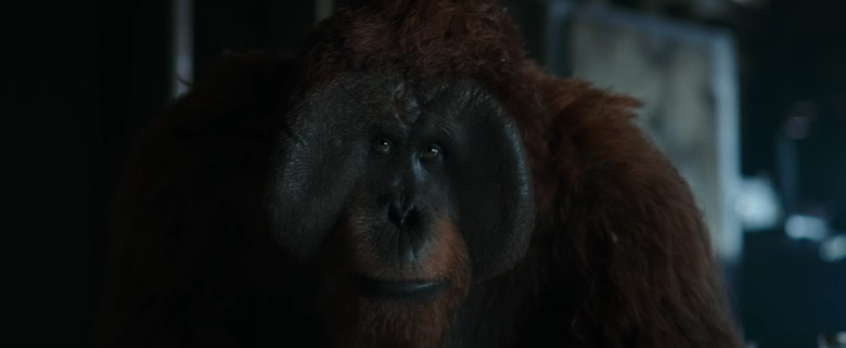 war for the planet of the apes maurice