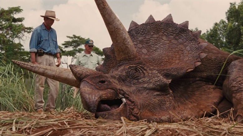 Sick Triceratops