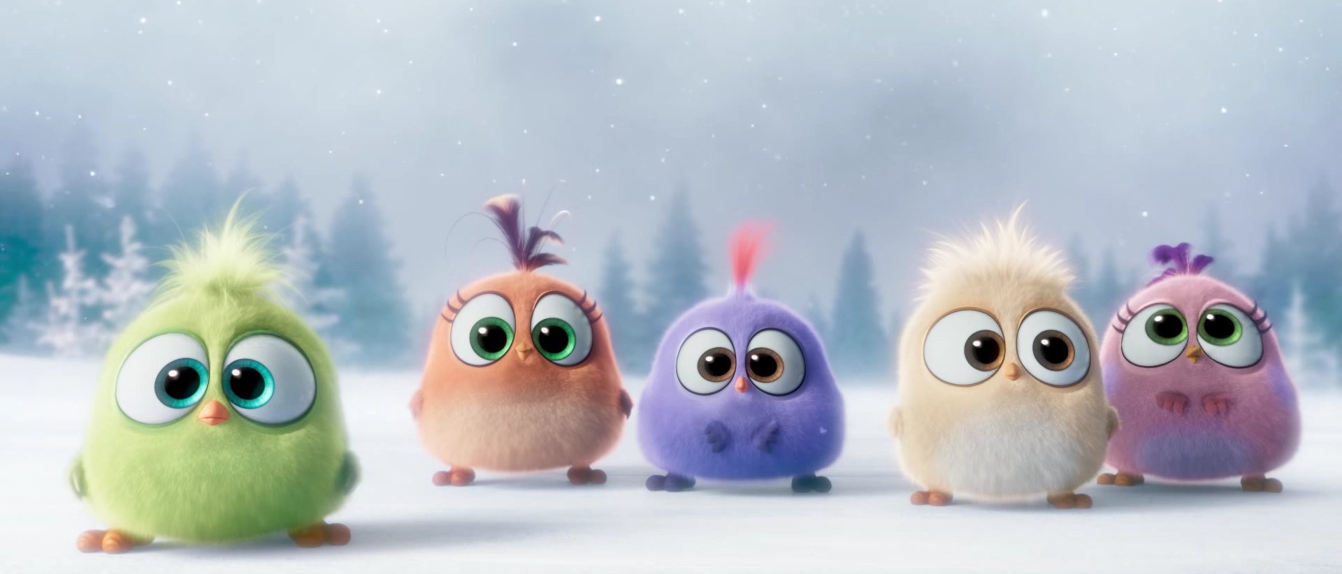 Watch Adorable Angry Birds Hatchlings Holiday Greeting