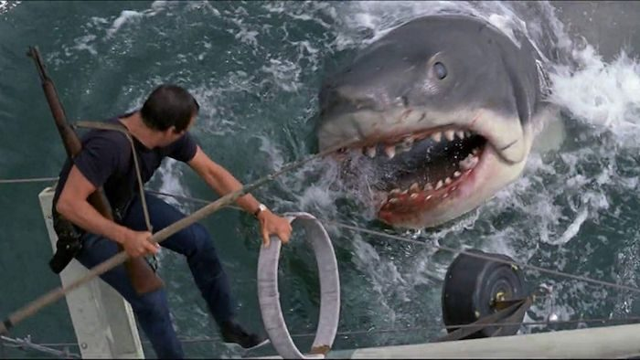 Ariel Fisher's Favorite Movies of All Time - Jaws