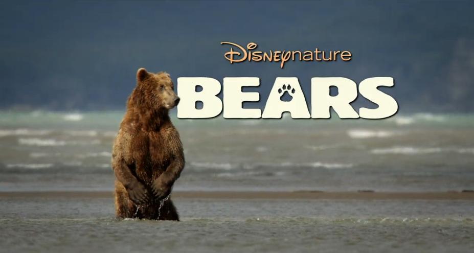 u0026 39 bears u0026 39  trailer  disneynature gets grizzly in 2014  u2013   film