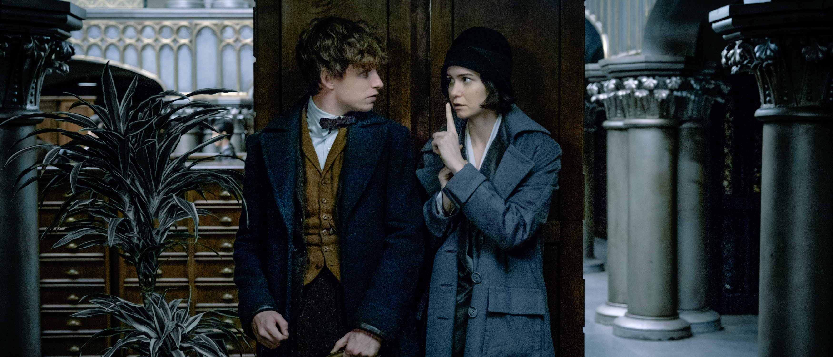 The action of the sequel Fantastic beasts will take place in Paris 11/23/2017 79