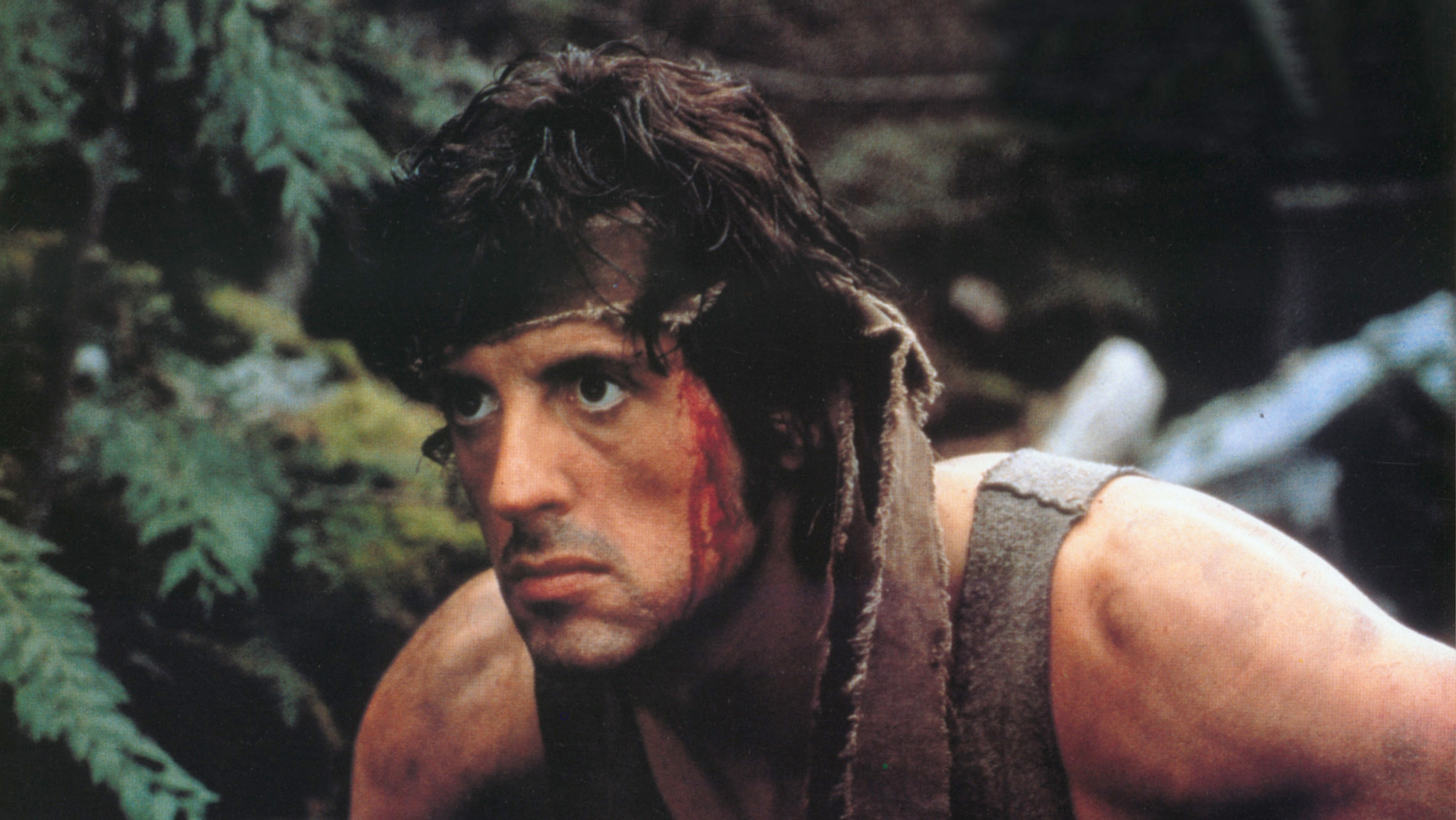 Sylvester Stallone will play again John Rambo 61