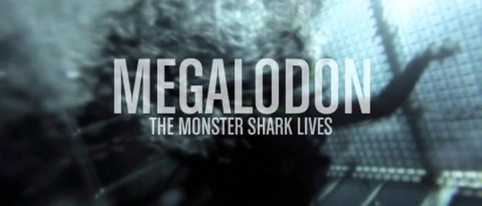 Megalodon- Monster Shark Lives