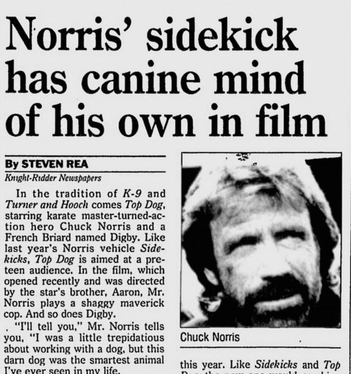 Norris' Sidekick has canine mind of his own in film