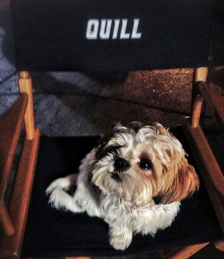 Quill chair