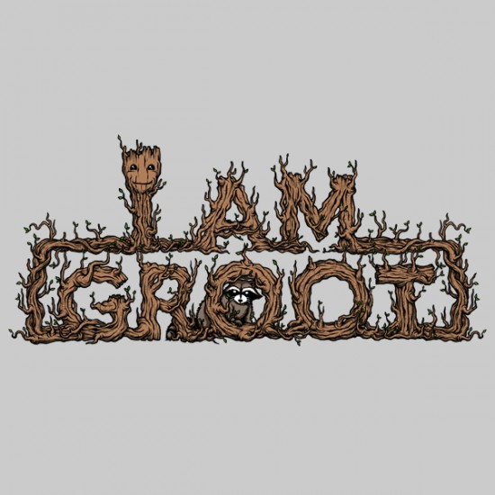 The-Raccoon-Protector