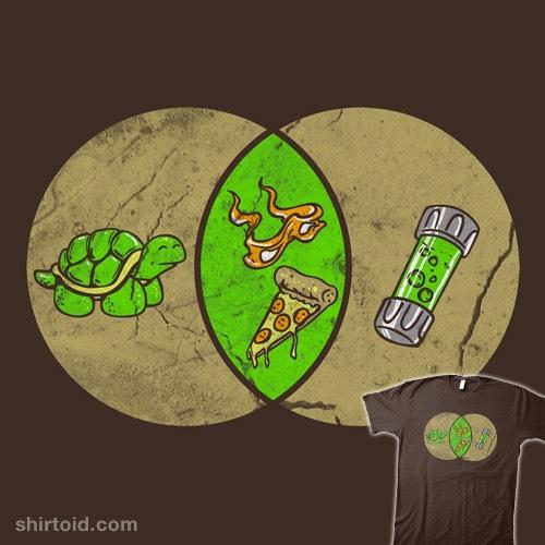 Turtle Diagram t-shirt