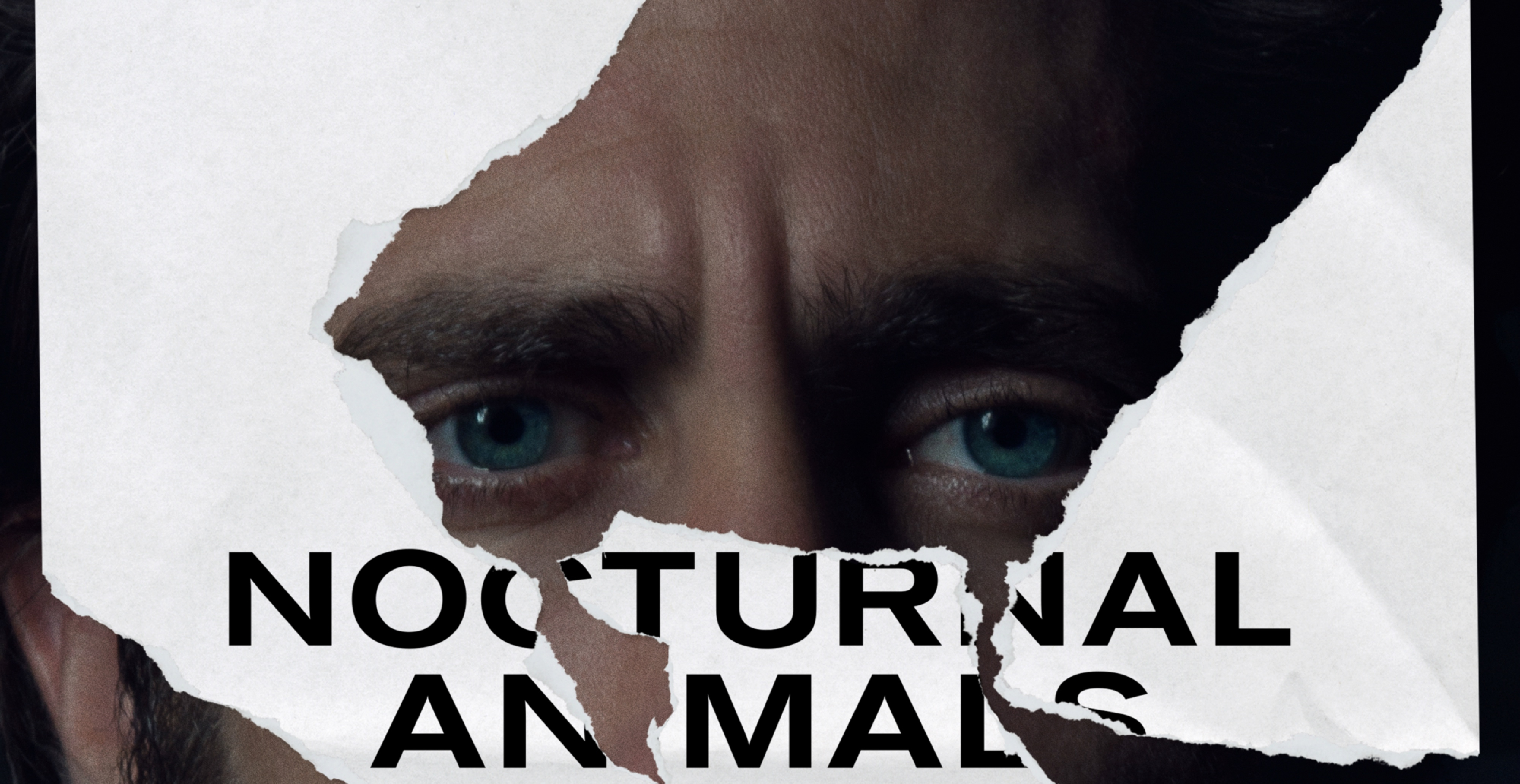 Download Nocturnal Animals (2016) 1080p BRRip Dual Audios [ HIN, ENG ] Eng Torrent