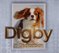 digby the dog the interview