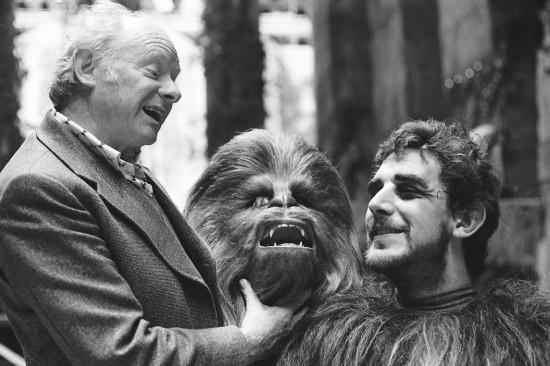 Peter Mayhew played Chewbacca