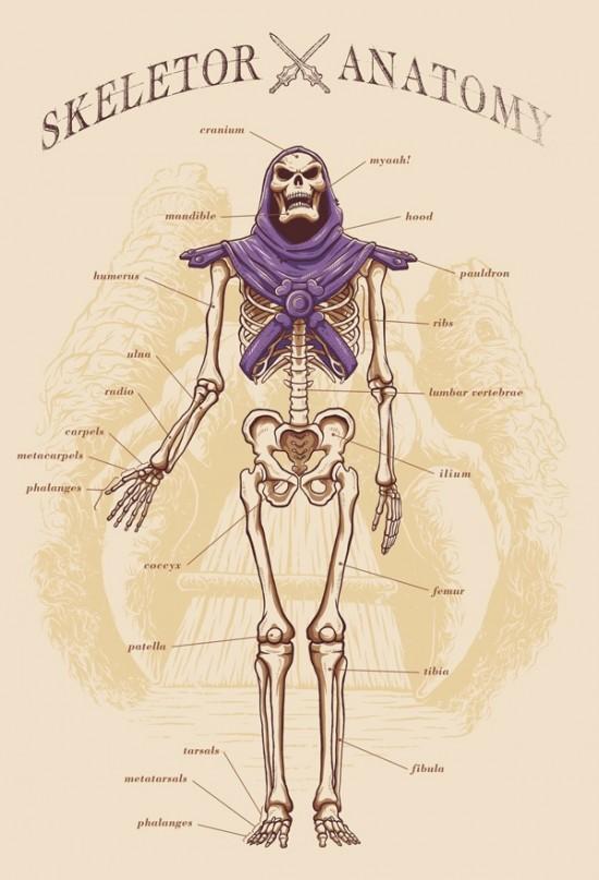 Adriano Alves – Skeletor Anatomy