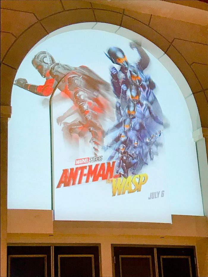 Ant-Man and the Wasp Projection Poster