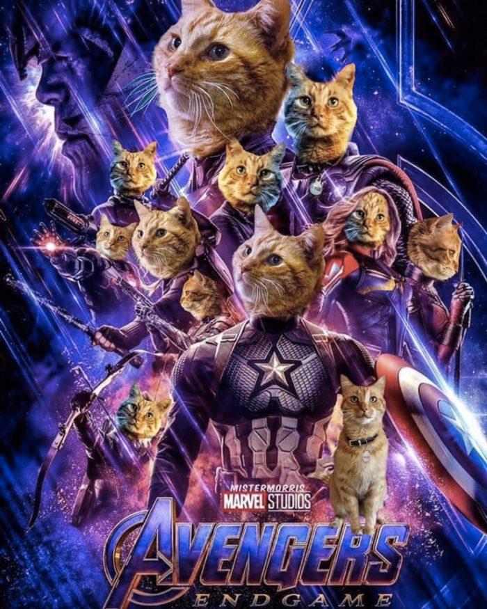 Avengers Endgame Goose Poster