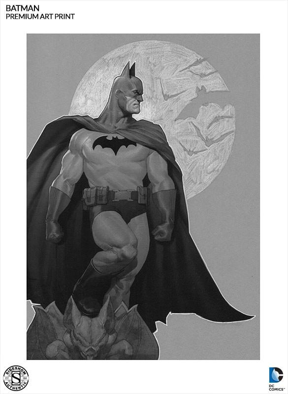 batman-sentinel-of-gotham-002