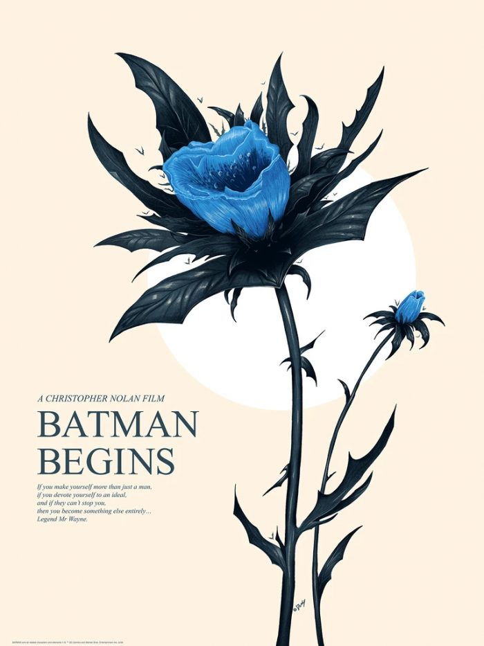 Batman Begins by Doaly