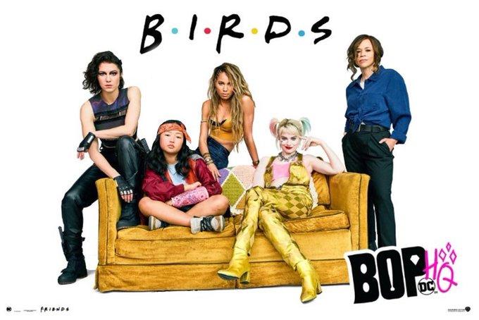Birds of Prey Friends Poster